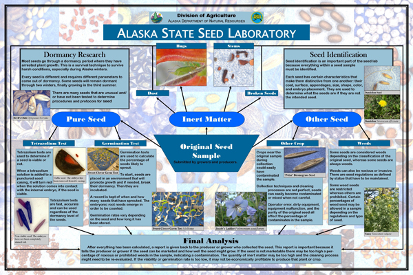 Seed Lab Poster