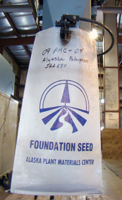 Foundation seed
